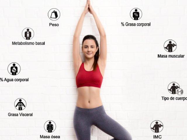 valores composicion corporal 2